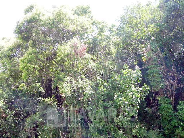 Vista foto 2